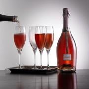 antropoti-freixenet-Elyssia-Pinot-noir-rose-Brut1